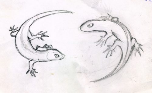 Lizards sketch - Russ Horne